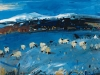 Winter Sheep, Skye