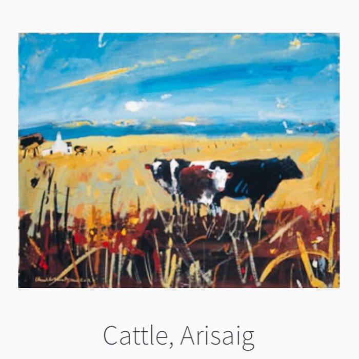 Cattle-Arisaig-